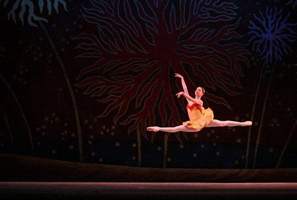 Du corps de ballet à danseur étoile